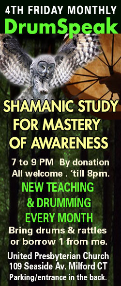 SpiritDrum Shamanic Study and Practice